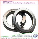 Le système métrique des rondelles de blocage de ressort de la norme DIN6796 Rondelle élastique de blocage en laiton