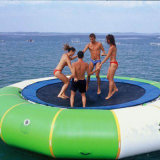 Outdoor Inflatable Bouncer with Slide (BC-016)