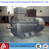 Motor de grande C.A. elétrico da tensão e da potência