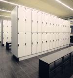 نظام يوغا إستوديو خزانة خزانة مع تعقّب هويس حثيّة