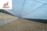 Serra del film di materia plastica per piantare