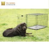 Gabbia dell'animale domestico del commercio all'ingrosso della fabbrica della Cina, cassa del cane, fossa di scolo del cane