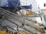 De lange Geselende Staaf van de Container smeedde het Gegalvaniseerde Staal van de Legering