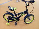 Fabricante de China da bicicleta, bicicleta do OEM, bicicleta do estilo de Ámérica do Sul