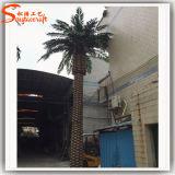 Albero artificiale esterno della palma da datteri di prezzi competitivi per la decorazione del giardino
