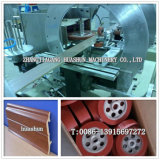 Máquina de carimbar película quente da estrutura de moldagem de PS