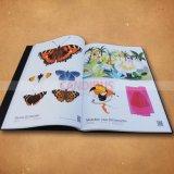 Impression de livres de haute qualité Livre à couverture rigide Livre de poche de l'impression
