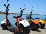 1200W scooter électrique de batterie amovible sans frottoir du moteur 60V 12ah, scooter électrique de gros pneu de cocos de ville