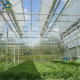 Лист из поликарбоната высокого качества сельскохозяйственных выбросов парниковых газов