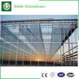 Galvanisierte Stahlkonstruktion-Glasdeckel-verwendete Handelsgewächshäuser