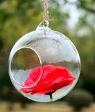Sfera d'attaccatura di vetro bella di vendita calda
