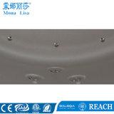 Vasca ellittica della STAZIONE TERMALE acrilica di massaggio grande (M-3348)
