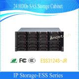 Cabinas de almacenaje conservable fácil de Hdds Sas de la red de Dahua 24 (ESS3124S-JR)