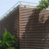 Panneau de mur décoratif composé en plastique en bois de coextrusion