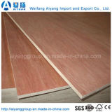 Factory Direct Sale Bintangor/Okoume Plywood with Two Sides Sanded