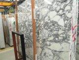 Arabescato белые мраморные плиты и плитки для ванной комнатой и кухней в левом противосолнечном козырьке