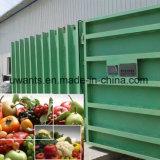 Frutas y vegetales de alta eficiencia del refrigerador vacío para la venta