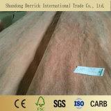 Bintangor de 2,5 mm/Okoume enchapado de madera contrachapada comercial