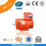 Str. Single Phase WS Generator Head 20kw St-20 Alternator