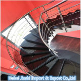 Polierprämie plus schwarze Granit-Treppen-Jobstepps für Innen