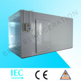 Congelador Walk-in painel isolado para o armazenamento frio com Ce