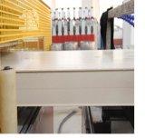 Máquina compuesta plástica de madera de la protuberancia del panel de WPC