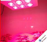 الصين صاحب مصنع [756و] ينمو عرنوس الذرة [لد] أضواء لأنّ معمل طبّيّ