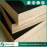 La película de la construcción de dos caras cubiertas de madera contrachapada con Super calidad
