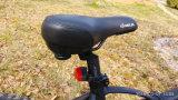 Bici plegable eléctrica de la venta caliente 2017 con 26 '' pulgadas Ebike plegable