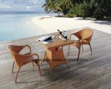 Toda a mobília de vime do Rattan da cadeira da mobília do pátio de Weatehr que janta o jogo de café ao ar livre da cadeira & da tabela (YTA004&YTD002-5)