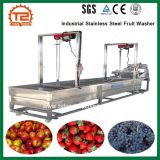 Machine à laver industrielles de fruits Fruits de la rondelle en acier inoxydable