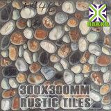 300*300 ريفيّة [فلوور تيل] خزي ريفيّة [فلوور تيل] حجارة نظرة [فلوور تيل]