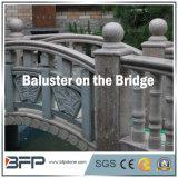 Granit Ballustrade/balustrade/Bulaster la passerelle/cour extérieures/jardin
