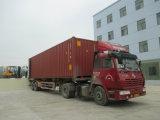 Tcm Appearance 2.5tons Gasoline Forklift mit CER Certification