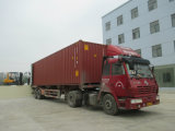 Tcm Appearance 2.5tons Gasoline Forklift avec du CE Certification