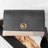 Il sacchetto di frizione con metallo passa a signore la borsa speciale Sh383 di disegno