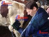 Des animaux de ferme de la grossesse de la numérisation de l'échographie Machine, portable, ordinateur de poche, USG du scanner à ultrasons à usage vétérinaire, l'équipement médical à ultrasons, sonde à ultrasons