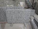 G439 свет - серый каменный Countertop кухни гранита