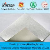 Membrana impermeable de Geomembrane del HDPE