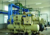 Entreposage au froid de chaîne du froid de large échelle pour le centre serveur de distribution de logistique d'aliments surgelés