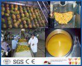 de verwerkingslijn van de mangopulp