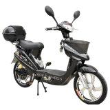 Das meiste elektrische Fahrrad des populärer Motor250with350with500w mit hinterem Kasten (EB-008)