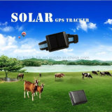 Le GPS tracker Ultra-Long batterie solaire pour le PET/vache/animal avec imperméable V26