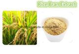 Uittreksel 99% van de Zemelen van de rijst Natuurlijke Ferulic Zure Beste Prijs met Vrije Steekproef