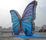 Раздувная гигантская бабочка воздушного шара (K2052)