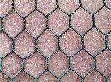 Galvanizzato catturando con la rete fabbricazione esagonale della rete metallica del pollo della rete metallica in Cina
