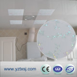 Tuiles à la maison intérieures de plafond de PVC de décoration