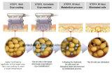 Neuester Cryolipolysis Frost-fette Fettabsaugung, die Maschine abnimmt