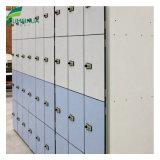 Haltbares und populäres phenoplastisches lamellenförmig angeordnetes Schule-Schließfach