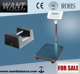 DIGITAL Platform Scale off Stainless Steel Platfrom